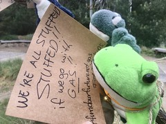 These two frogs are already stufffed, but we don't need to be if we don't go with gas. September 25 Global climate strike in Melbourne under pandemic lockdown.  #myMoreland #fundourfuturenotgas