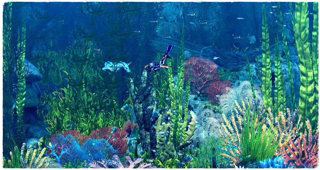 The colors of the Underwaterworld