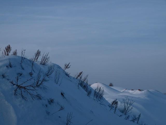 Winter snow landscape | February 5, 2010 | Tarbek - Schleswig-Holstein - Germany