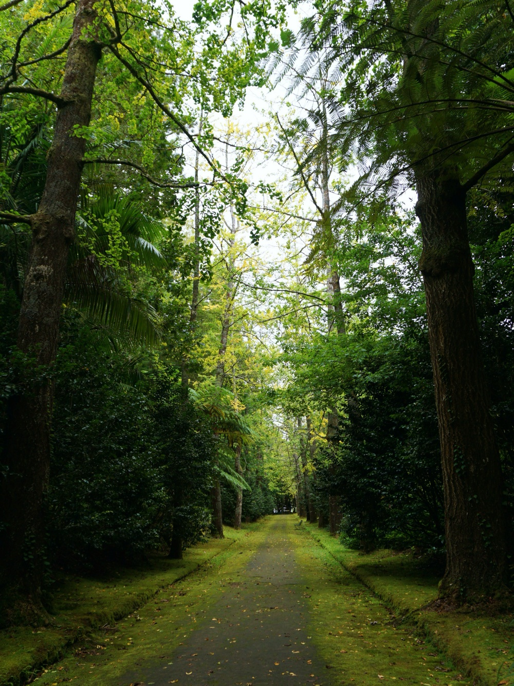 Terra Nostra Park Azores