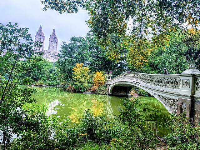 Autumn is Here, Central Park Bow Bridge