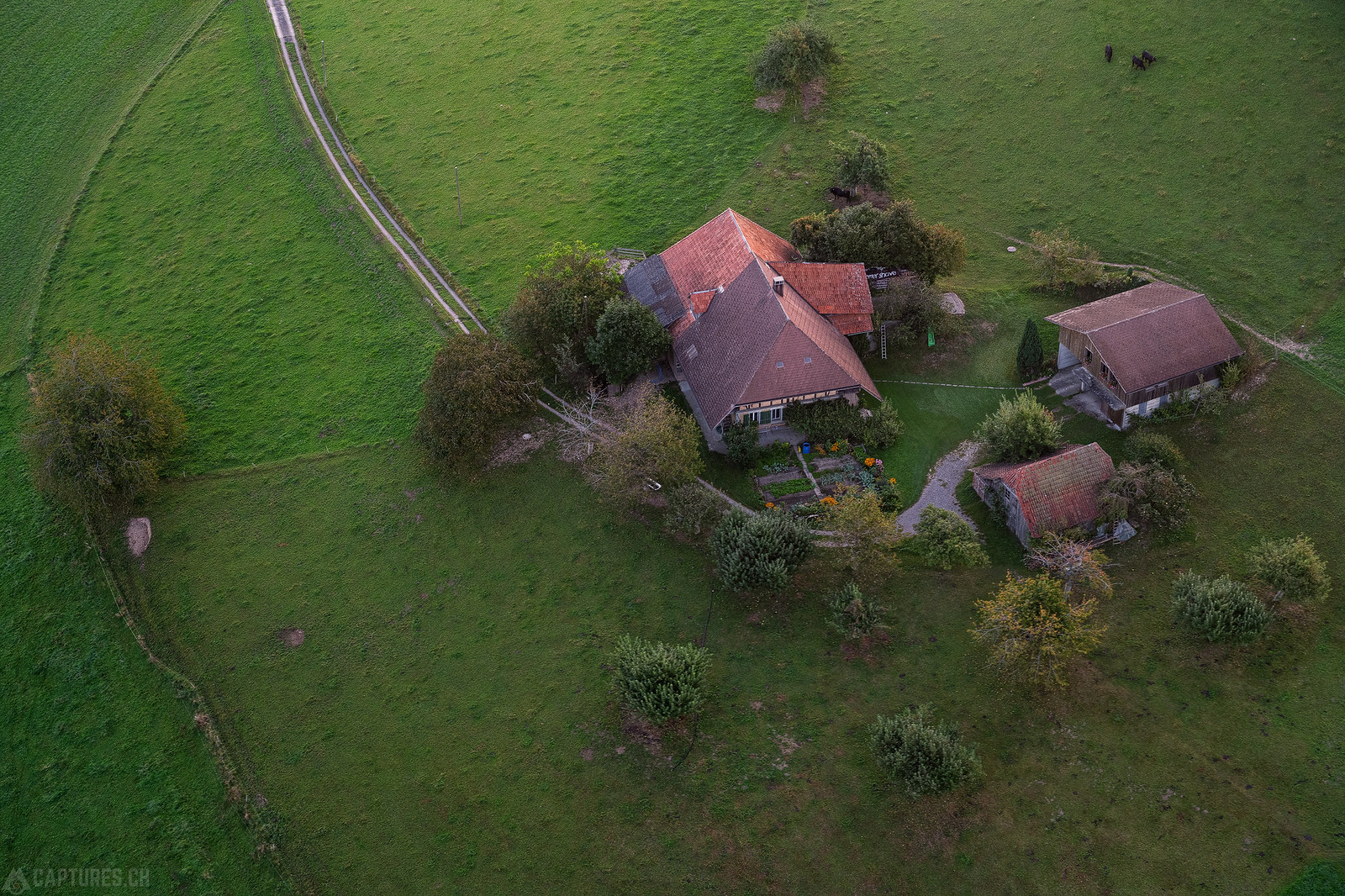 Farm - Sumiswald