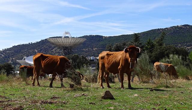 Madrid Deep Space Communications Complex (MDSCC)