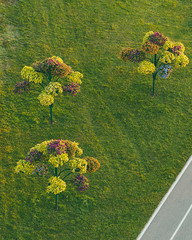 City plants | Kaunas aerial