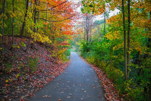 Following The Autumn Colours (Explore)