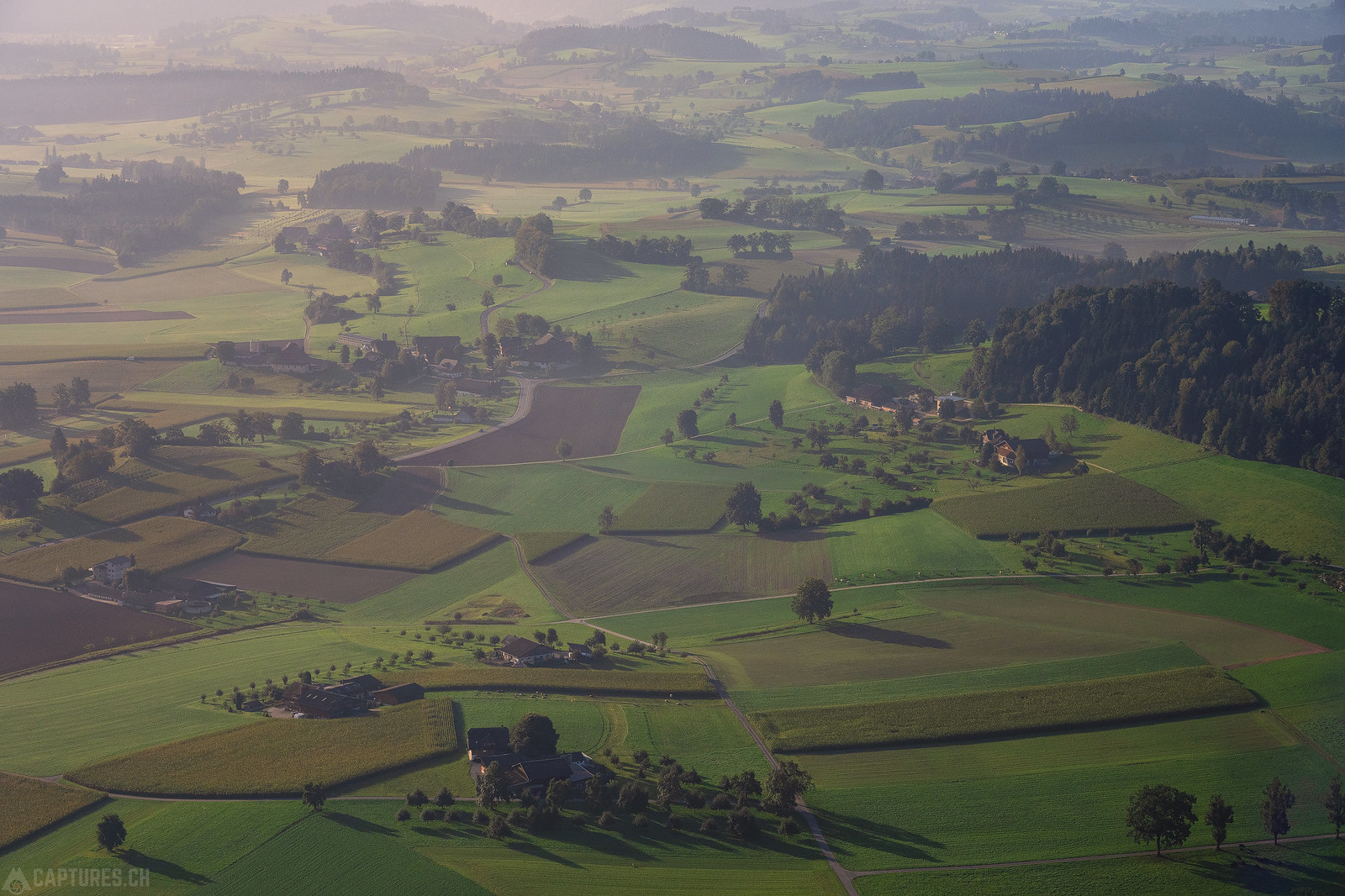 Farmland - Willisau