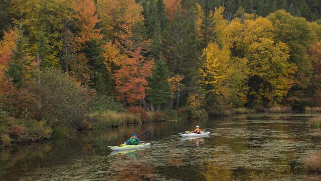 Automne, autumn - Kayaks, Marais du Nord, PQ, Canada - 9555