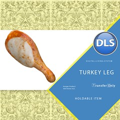DLS Turkey Leg (Hunger)
