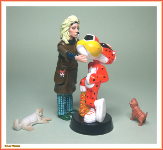 """""""Nice kitty. Come home with me, Chester.  I have Cheetos."""""""