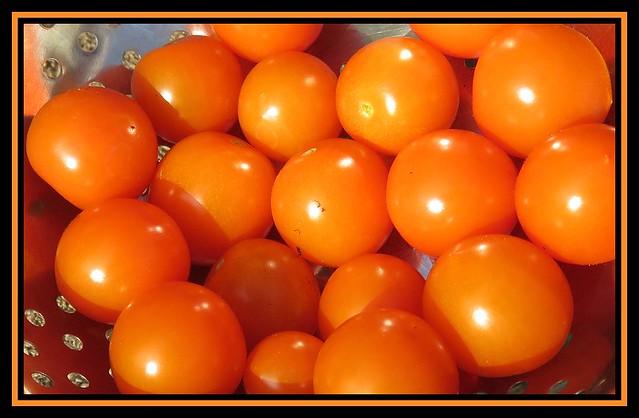 Cherry Tomatoes. Honeycomb