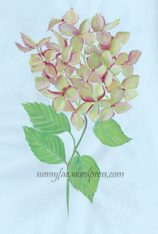 hydrangea painted with gouache