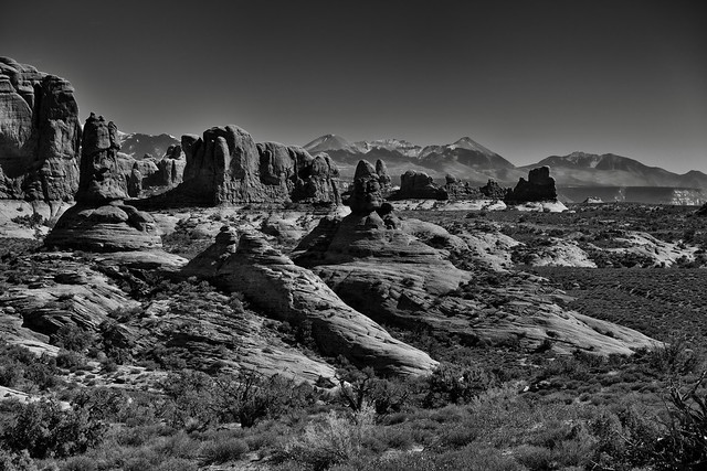 I Looked Across a Utah Desert, Seeing Wonders Near to Far (Black & White, Arches National Park)