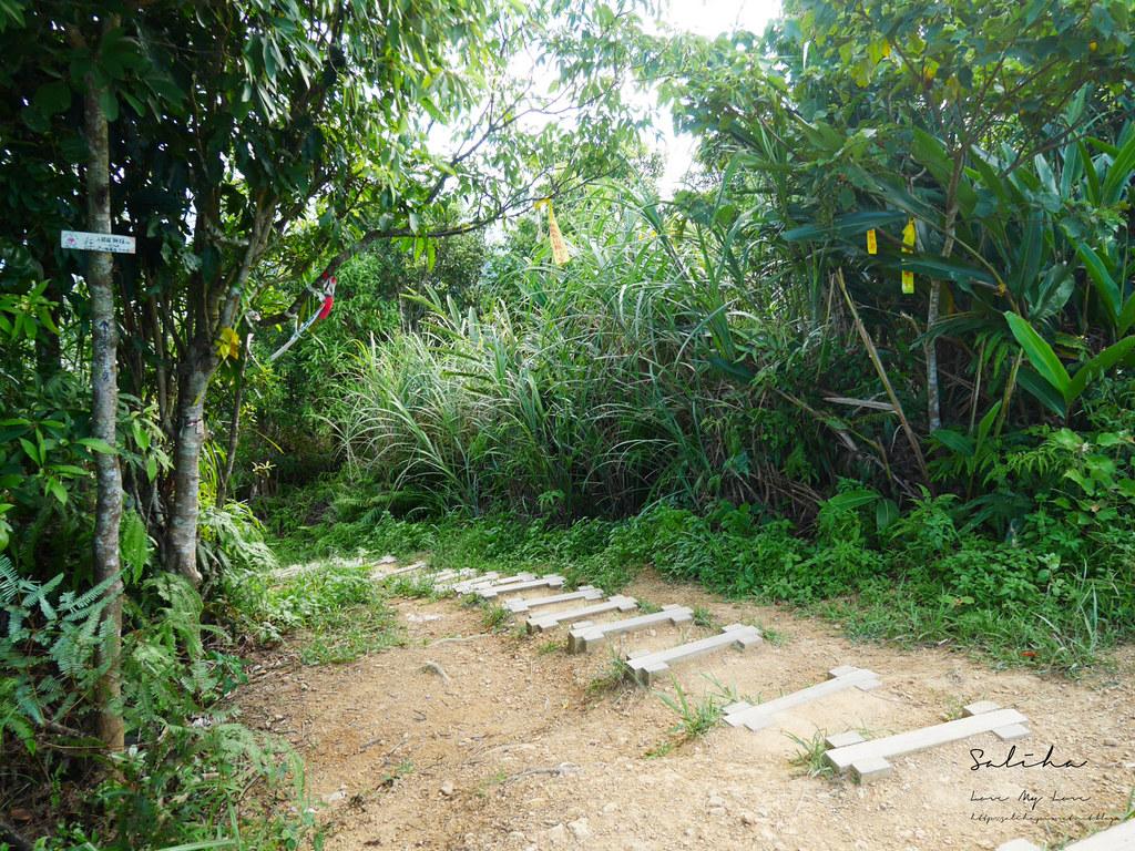 新北石碇鱷魚島步道怎麼去交通爬山踏青超美山水秘境 (5)