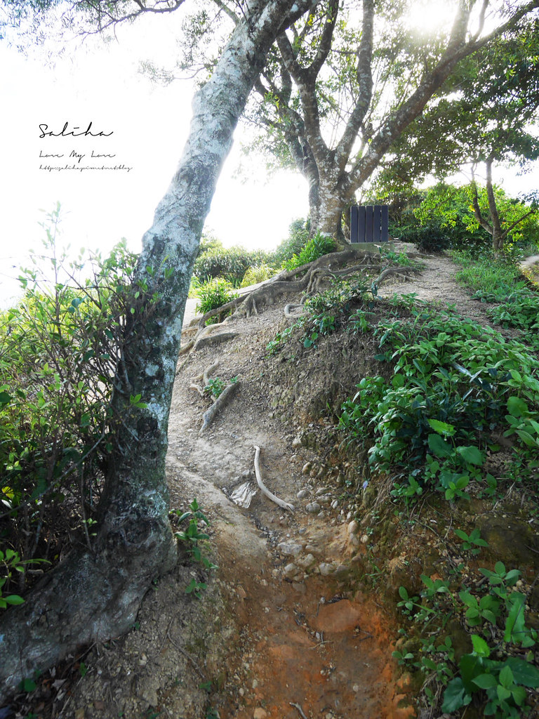 新北石碇鱷魚島步道怎麼去交通爬山踏青超美山水秘境 (1)