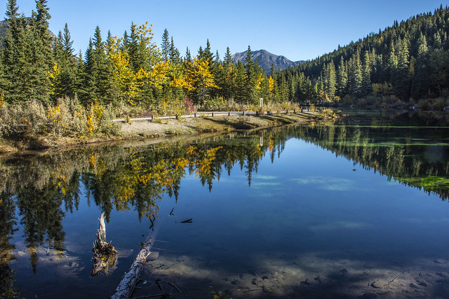 Mt. Lorette Ponds