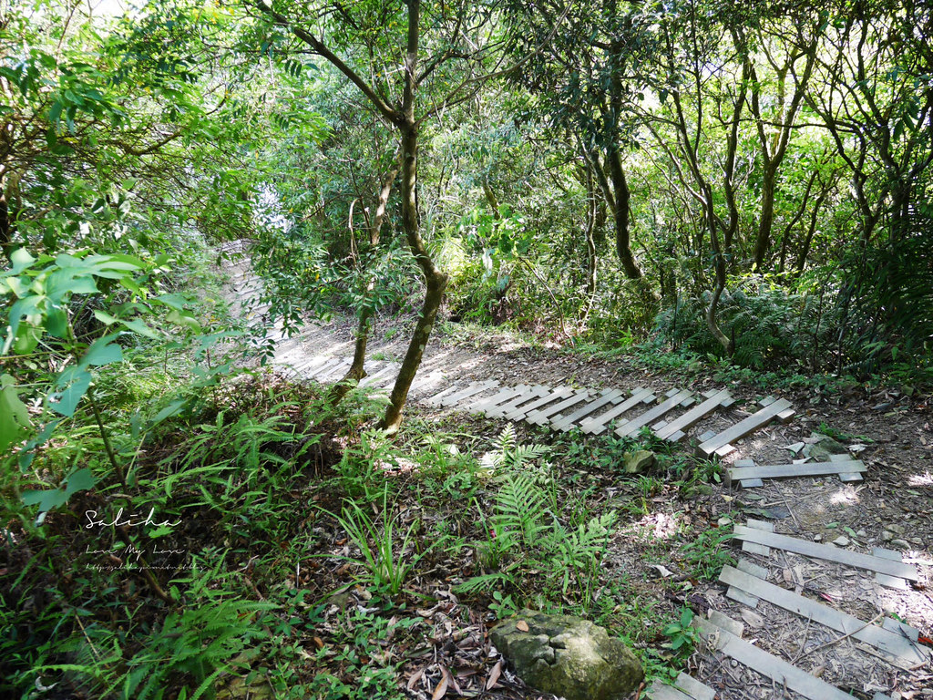 新北石碇鱷魚島步道怎麼去交通爬山踏青超美山水秘境 (9)