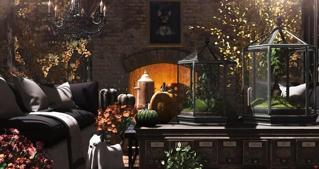 Autumn is your season....