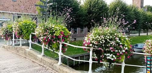 sloten flowers