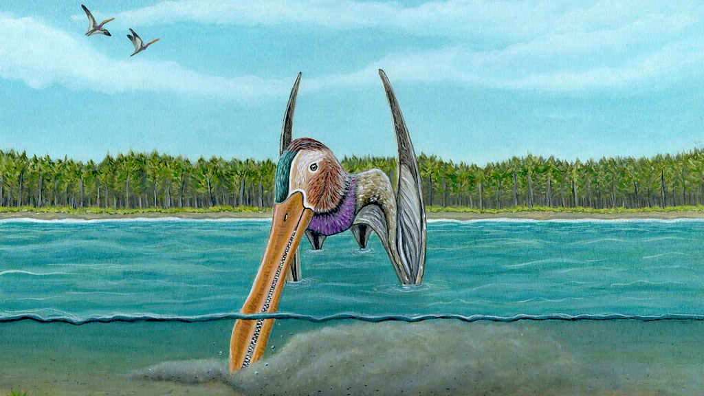 Artist impression of pterosaur probing in the riverbed with its beak