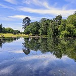 Reflections in the lake at Haslam Park