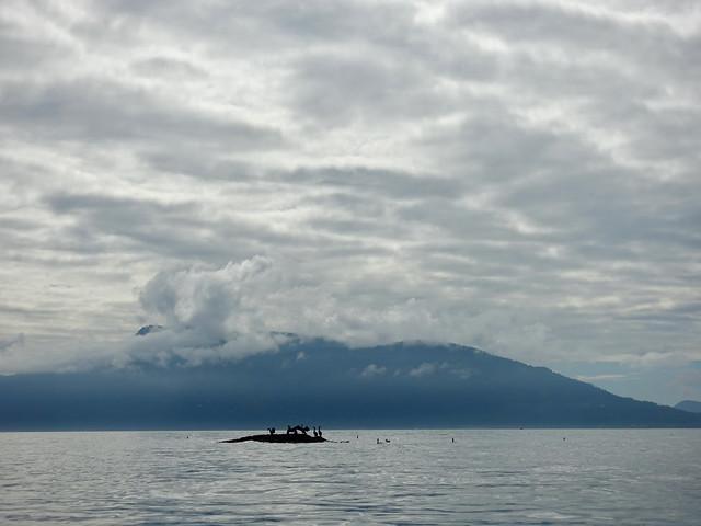 Sucia Island September 2020 - 50 of 72