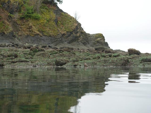 Sucia Island September 2020 - 38 of 72