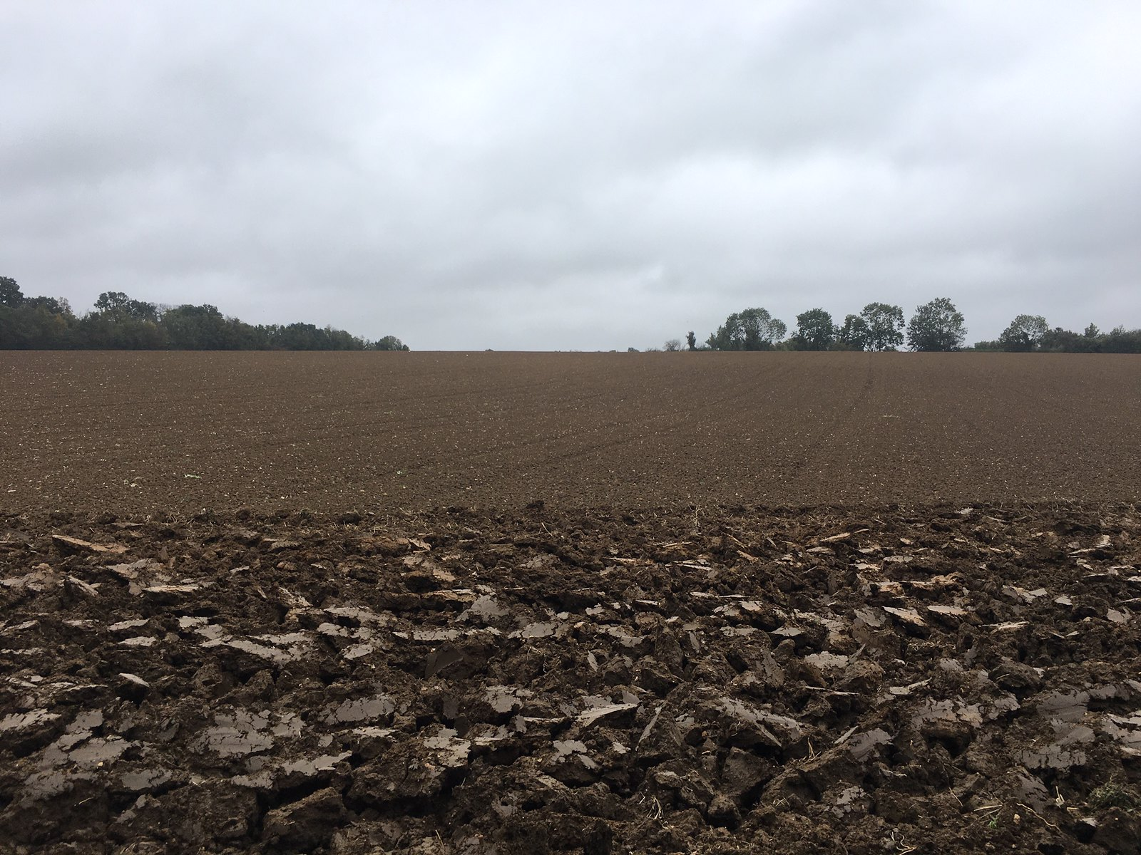 Big field Kelvedon Circular