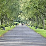 Long walkway at Haslam Park