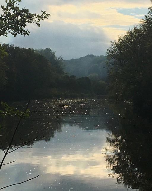 River Wear running through Washington