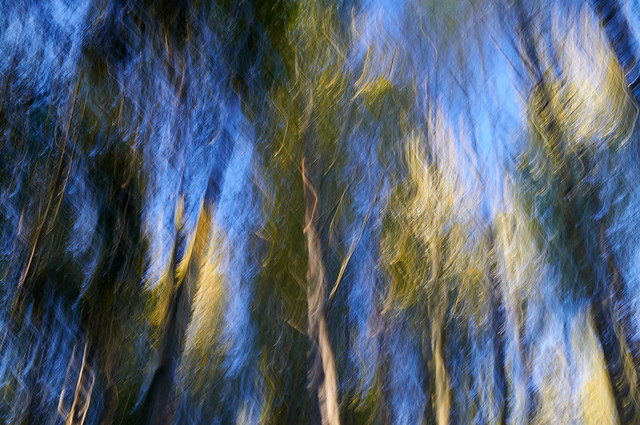 Early Fall ICM