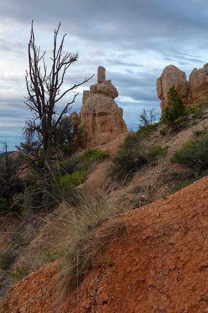 Bryce Canyon Layers