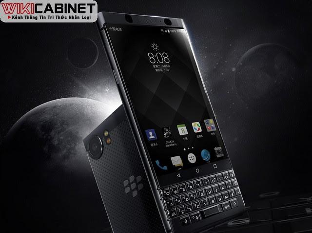 wikicabinet-blackberry-2021-4