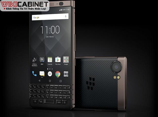wikicabinet-blackberry-2021-3