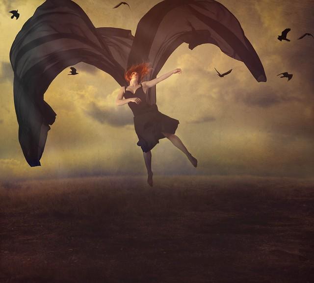Dance in Flight