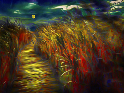 marsh walk moon parker river wildlife refuge newburyport ma georgia okeef colorful day digital flickr country bright happy colour scenic america world sunset sky red nature blue white tree green art light sun cloud park landscape summer old new photoshop google bing yahoo stumbleupon getty national geographic creative composite manipulation hue pinterest blog twitter comons wiki pixel artistic topaz filter on1 sunshine image reddit tinder russ seidel facebook timber unique unusual fascinating color