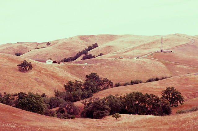 Last in Series // Sierra Vista Open Space Preserve, Northern California