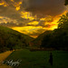 "<p><a href=""https://www.flickr.com/people/190085361@N04/"">nathan_jeffery</a> posted a photo:</p>  <p><a href=""https://www.flickr.com/photos/190085361@N04/50395694601/"" title=""Dove Dale landscape 😍""><img src=""https://live.staticflickr.com/65535/50395694601_c68cba0270_m.jpg"" width=""240"" height=""159"" alt=""Dove Dale landscape 😍"" /></a></p>"