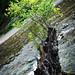 "<p><a href=""https://www.flickr.com/people/190085361@N04/"">nathan_jeffery</a> posted a photo:</p>  <p><a href=""https://www.flickr.com/photos/190085361@N04/50395866662/"" title=""Dove Dale landscape 😍""><img src=""https://live.staticflickr.com/65535/50395866662_d52da36de8_m.jpg"" width=""159"" height=""240"" alt=""Dove Dale landscape 😍"" /></a></p>"