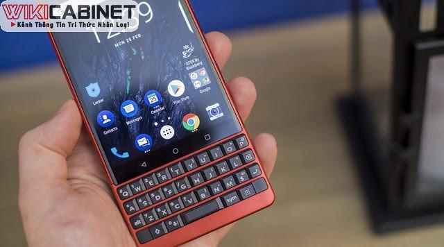 wikicabinet-blackberry-2021-1