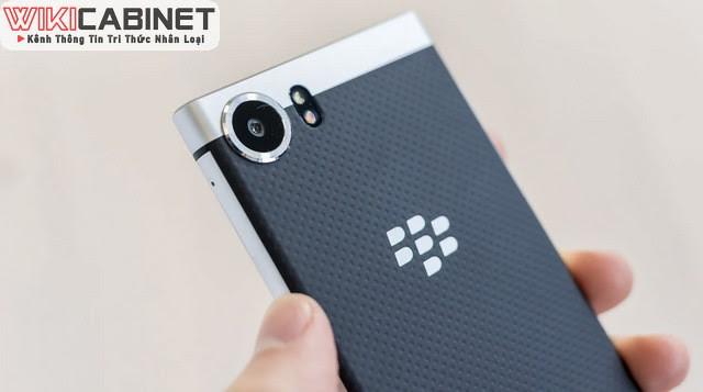 wikicabinet-blackberry-2021-6