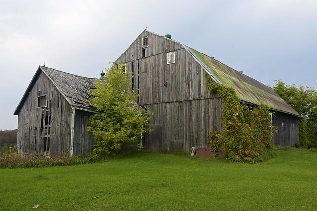 Abandoned barns (2)