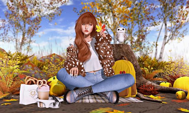 #395 Autumn memories