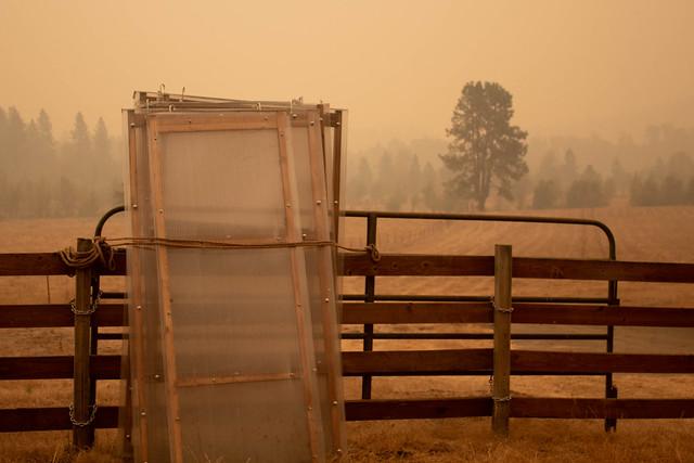 Smoke at Bar One Ranch