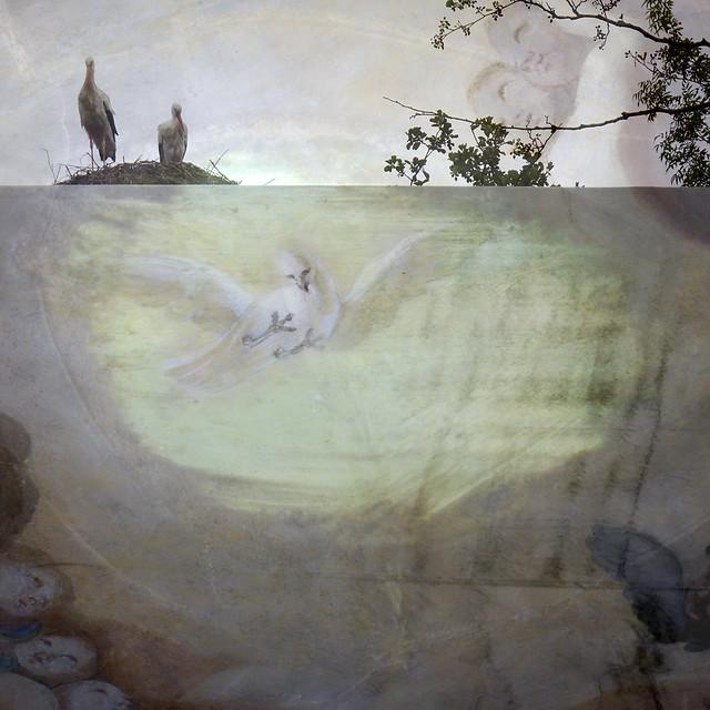 Le rêve de deux cigognes