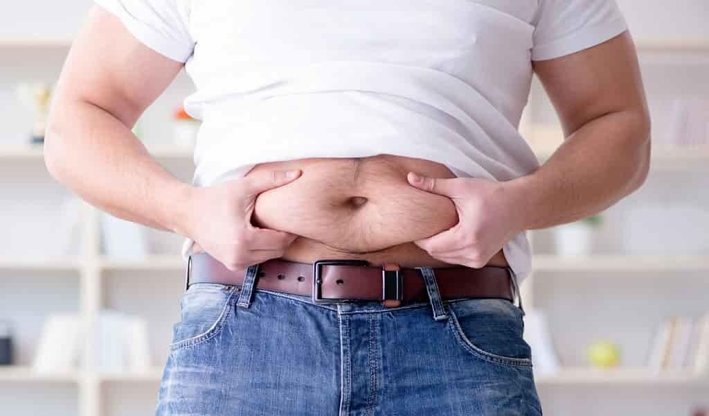 des-cellules-dans-le-cerveau-sont-responsables-de-obésité