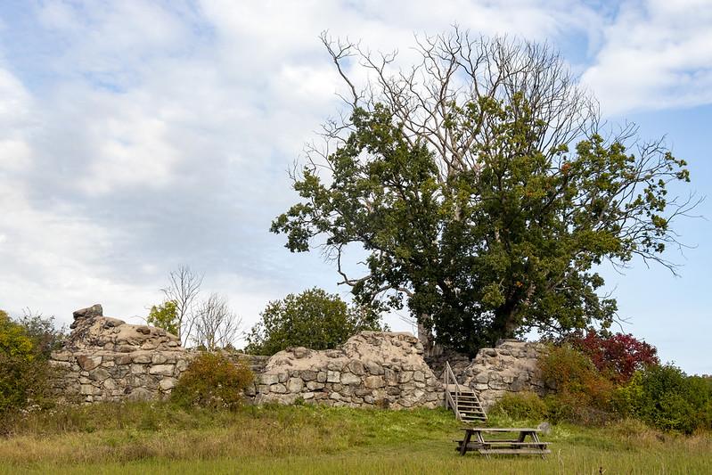 Medieval Ruin
