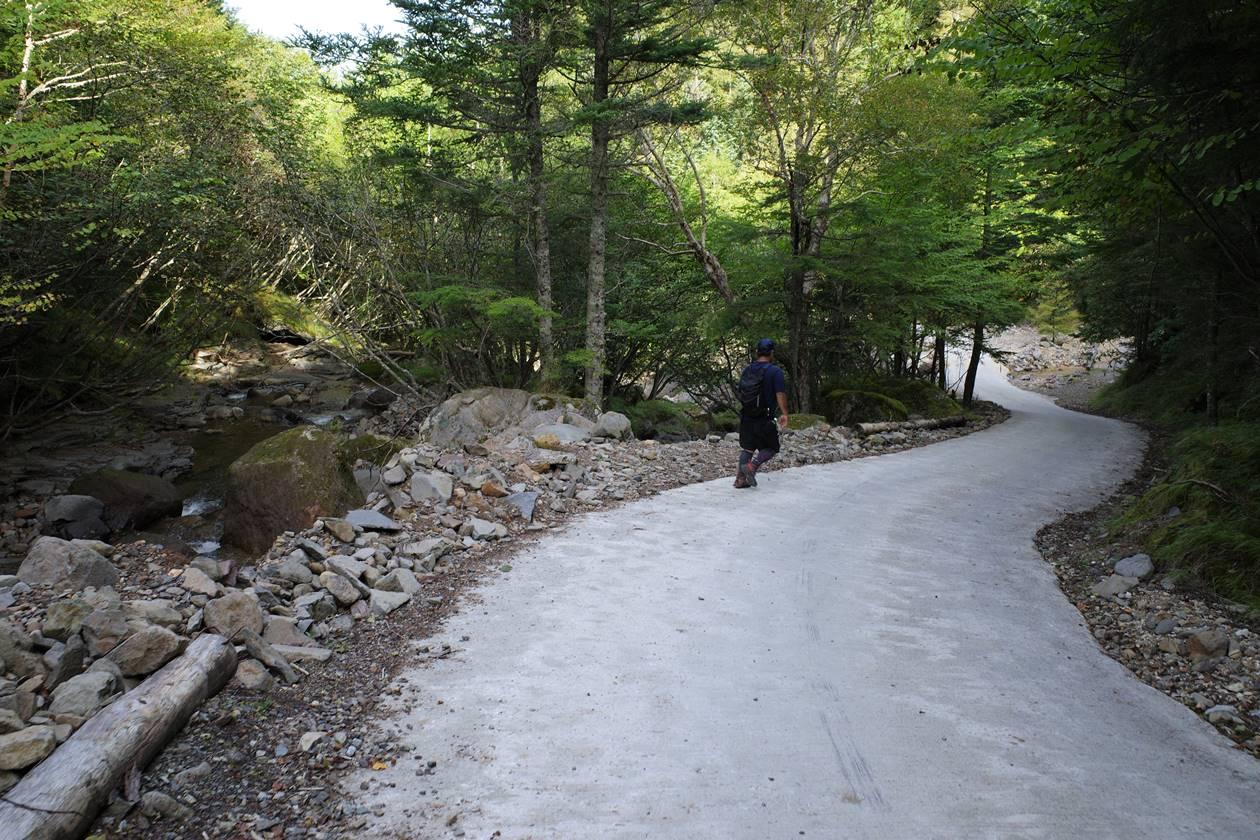 夏沢鉱泉までの林道