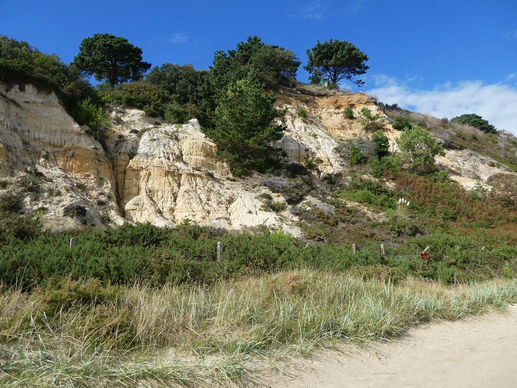 Canford Cliffs, Dorset