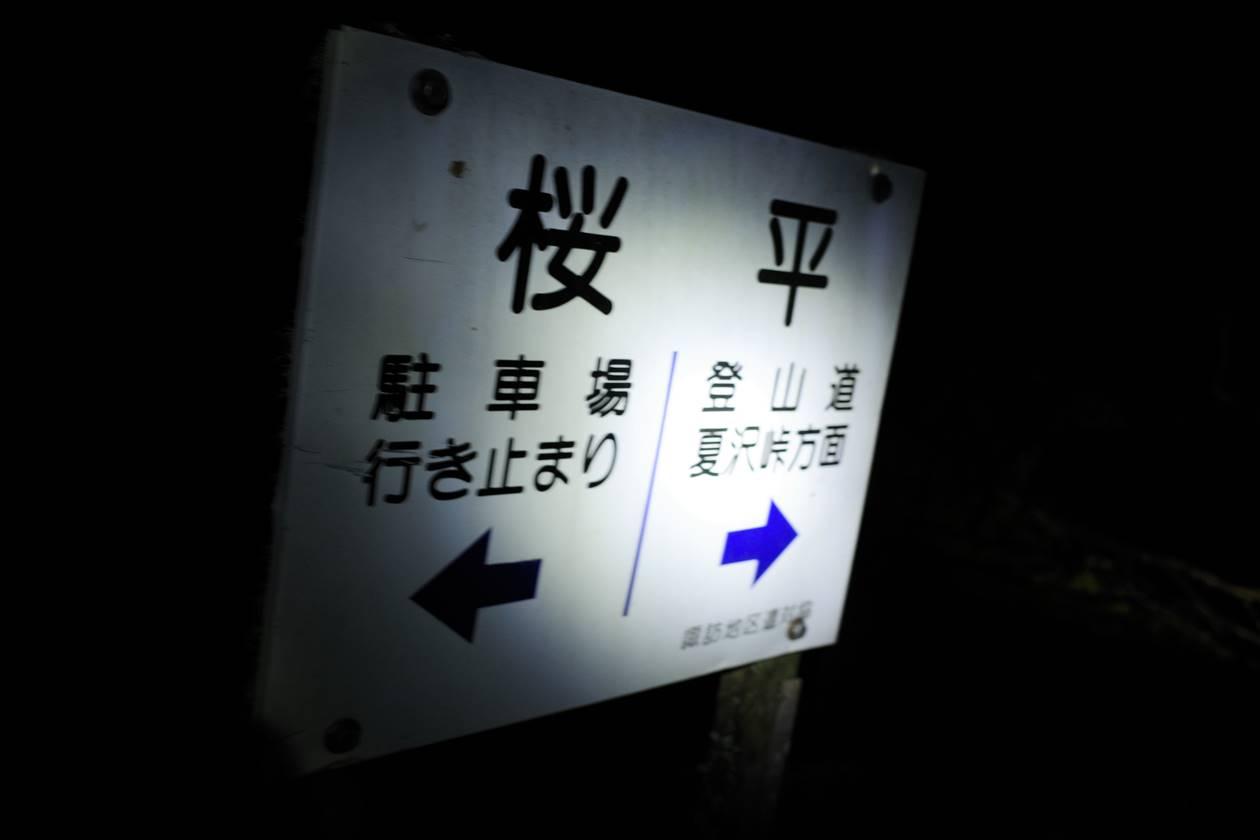 八ヶ岳・桜平
