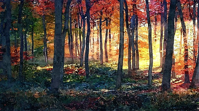 The Fall........Autumn has arrived